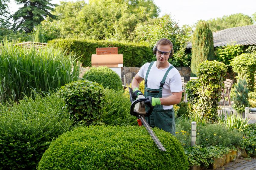 Gärtner bei Gartenarbeit