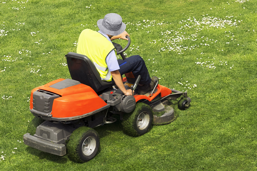 utility worker of municipality  with  lawn  mower , riding  mower,  in city park